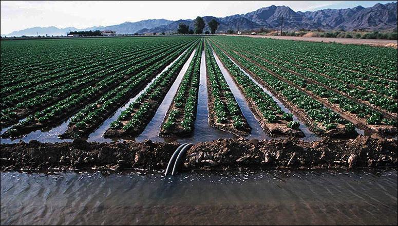 http://12.000.scripts.mit.edu/mission2017/irrigation/