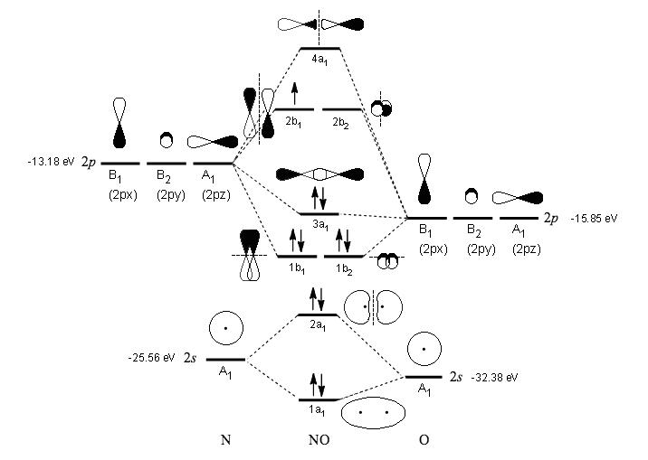 By writing molecular orbital configuration for NO,CO,O2 ...