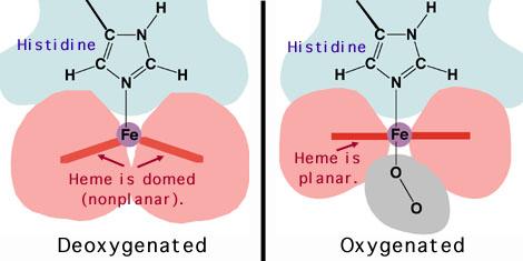 http://www.chemistry.wustl.edu/