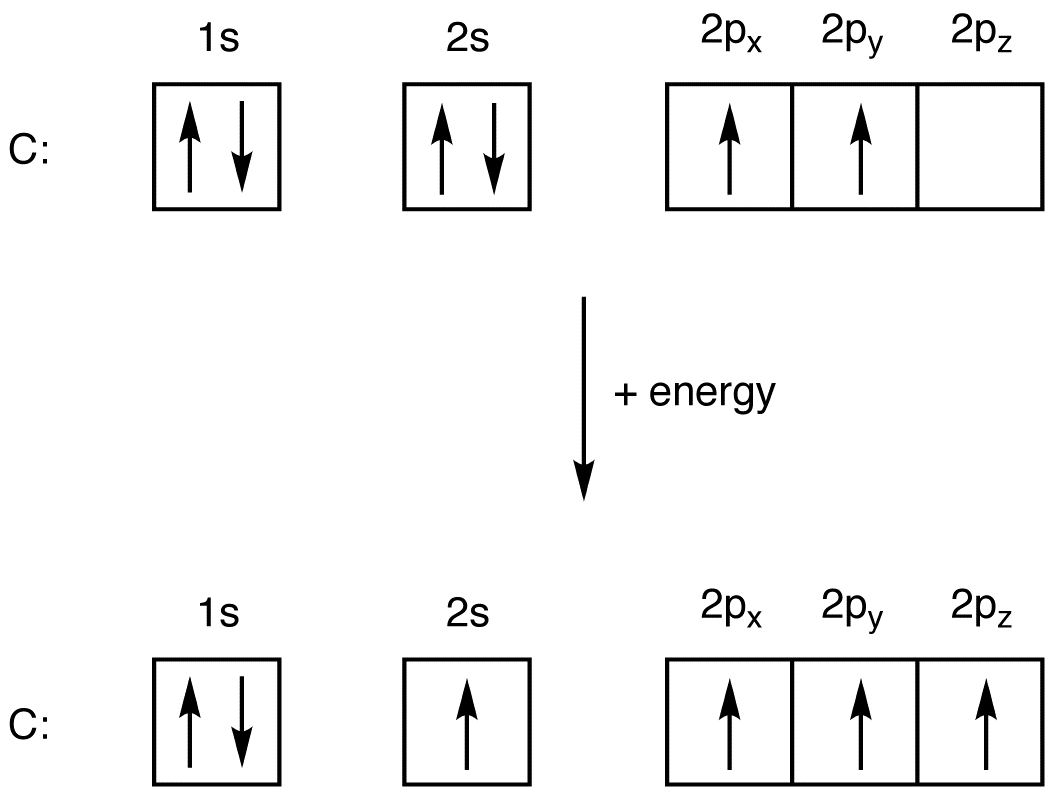 http://www.ochempal.org/index.php/alphabetical/g-h/hybridization/