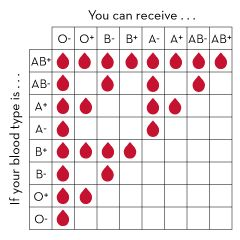 Blood types match what Child Blood