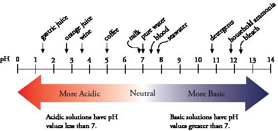 http://preparatorychemistry.com/Bishop_pH_Equilibrium.htm