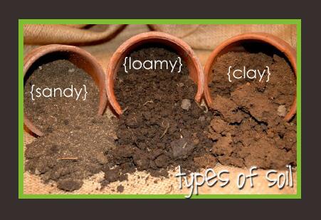 http://www.ntexaslandsearch.com/2017/11/12/best-uses-sandy-loam-soil/