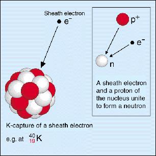 https://www.euronuclear.org/info/encyclopedia/e/electroncapture.htm