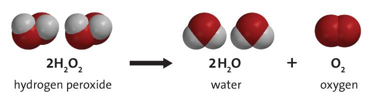 http://www.middleschoolchemistry.com/multimedia/chapter6/lesson5