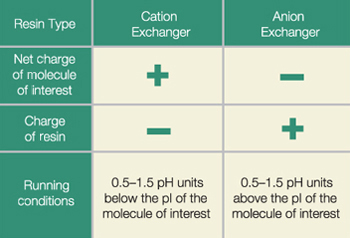 http://www.bio-rad.com/en-ro/applications-technologies/liquid-chromatography-principles/ion-exchange-chromatography