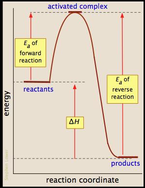 http://chemwiki.ucdavis.edu/Physical_Chemistry/Kinetics/Modeling_Reaction_Kinetics/Reaction_Profiles