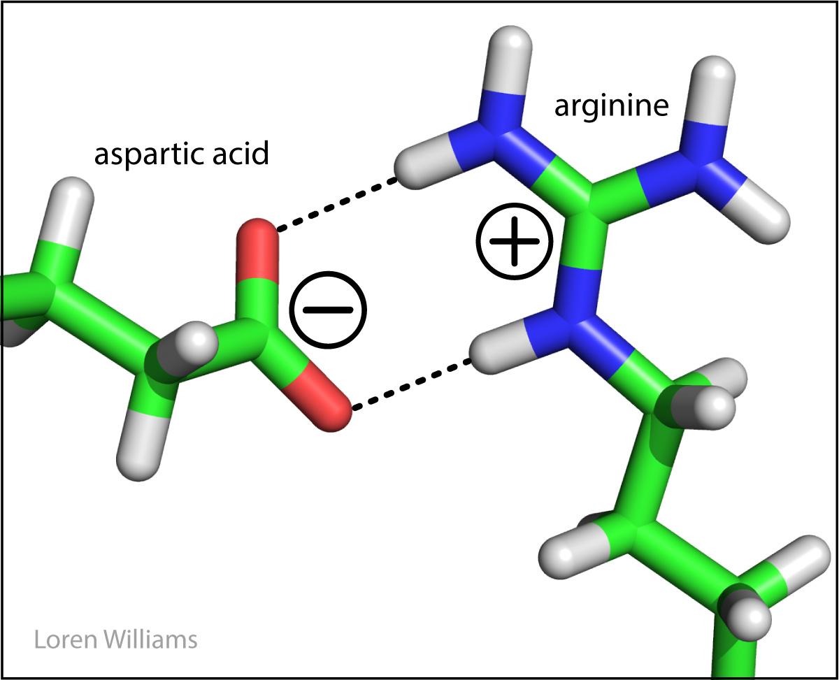 https://ww2.chemistry.gatech.edu/