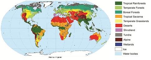 http://www.soils4teachers.org/around-the-world