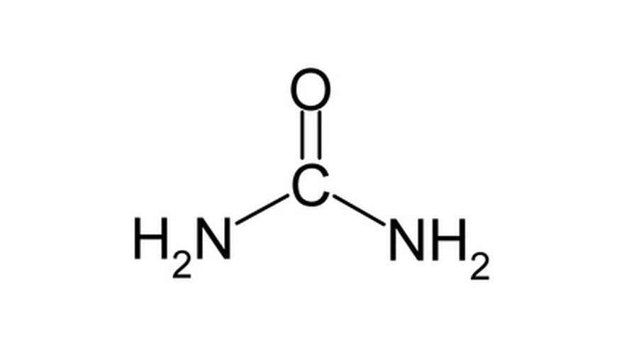 What Are The Criteria For A Molecule To Be Considered An Organic Compound Socratic