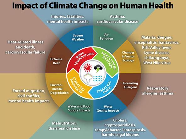 https://www.cdc.gov/climateandhealth/effects/