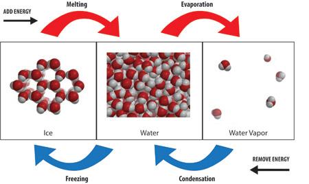 http://www.kentchemistry.com/links/Matter/EndoExo.htm