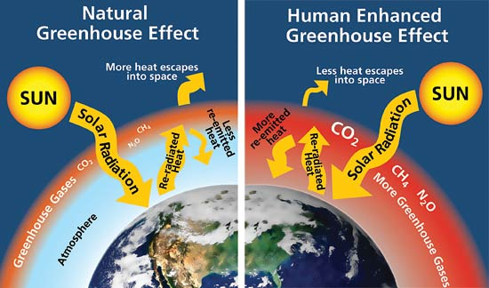 http://www.livescience.com/37743-greenhouse-effect.html
