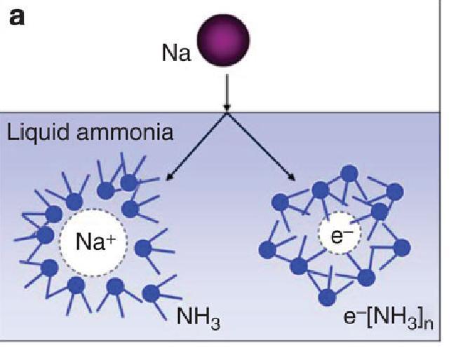 http://www.nature.com/ncomms/journal/v4/n2/fig_tab/ncomms2555_F1.html