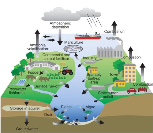 http://helcom.fi/baltic-sea-trends/indicators/inputs-of-nitrogen-and-phosphorus-to-the-basins/indicator-concept/