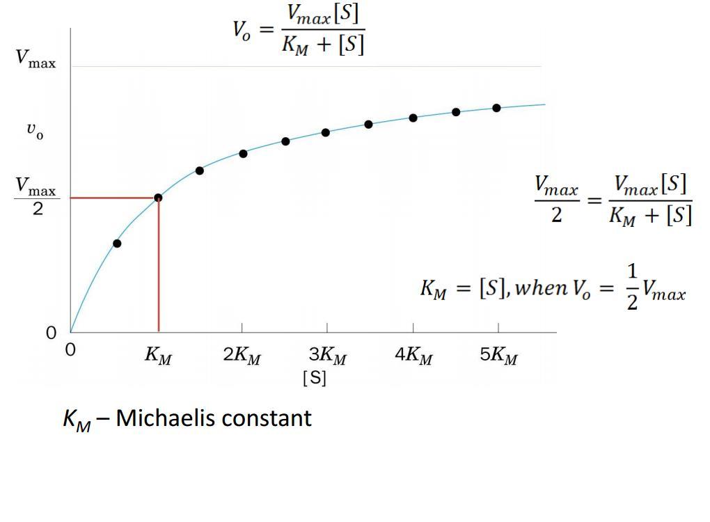 http://www.bu.edu/aldolase/biochemistry/html_docs/Chapter4-Discussion.pdf