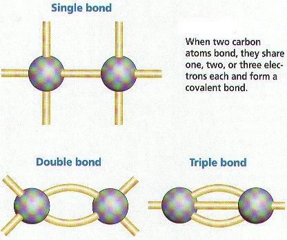 http://www.biologyjunction.com/biochemistry_notes_bi_ch3.htm
