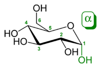 https://upload.wikimedia.org/
