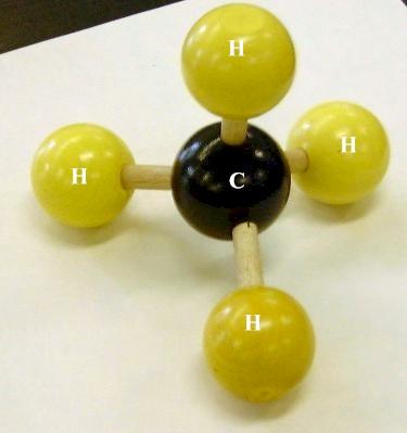 https://www.dscc.edu/bwilliams/biology%201110/biol_1110_molecular_models