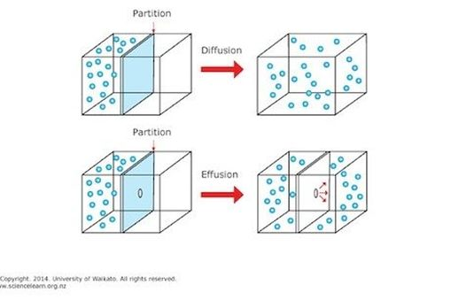 http://sciencelearn.org.nz/var/sciencelearn/storage/images/media/images/formula-view-images/gases-and-plasmas/diffusion-and-effusion/1007273-3-eng-NZ/Diffusion-and-effusion_gallery_supersize_landscapejpg