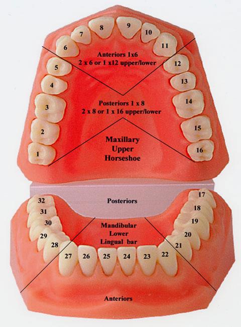 dentalimplants-usa.com