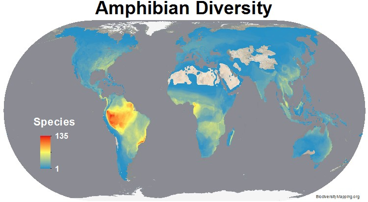 http://biodiversitymapping.org/wordpress/index.php/amphibians/