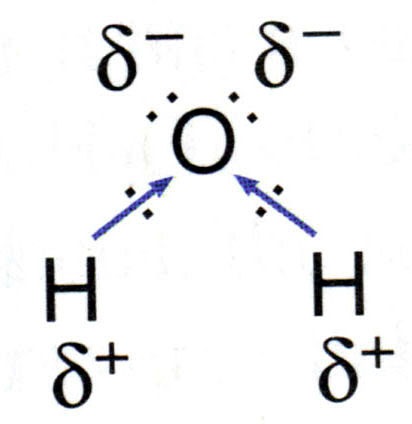 http://witcombe.sbc.edu/water/images/chemistrydipolescicx.jpg