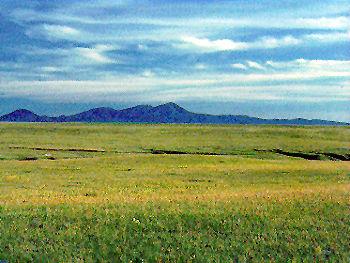 http://earthobservatory.nasa.gov/Experiments/Biome/biograssland.php
