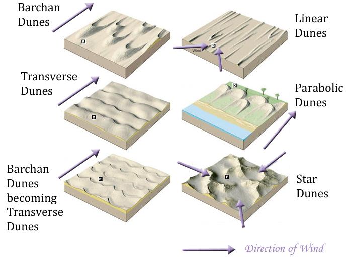 https://www.geocaching.com/geocache/GC5FEWQ_the-phenomenal-lagg-sand-dune-field?guid=745cf29e-0a2f-4249-a186-ae72306b27ac