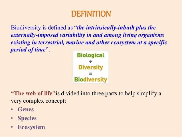https://image.slidesharecdn.com/conceptandcharacteristicsofbiodiversity-151230110045/95/concept-and-characteristics-of-biodiversity-2-638.jpg