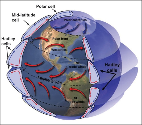 https://www.seas.harvard.edu/climate/eli/research/equable/hadley.html