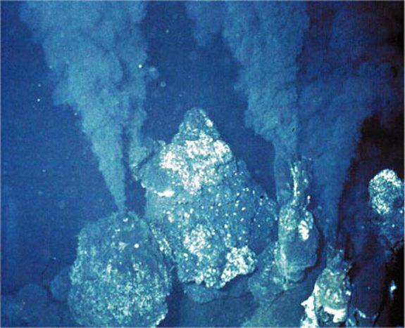 http://www.livescience.com/4579-fossils-support-deep-sea-origin-life.html