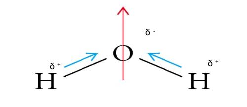 https://www.slideshare.net/mrtangextrahelp/tang-05-polarity