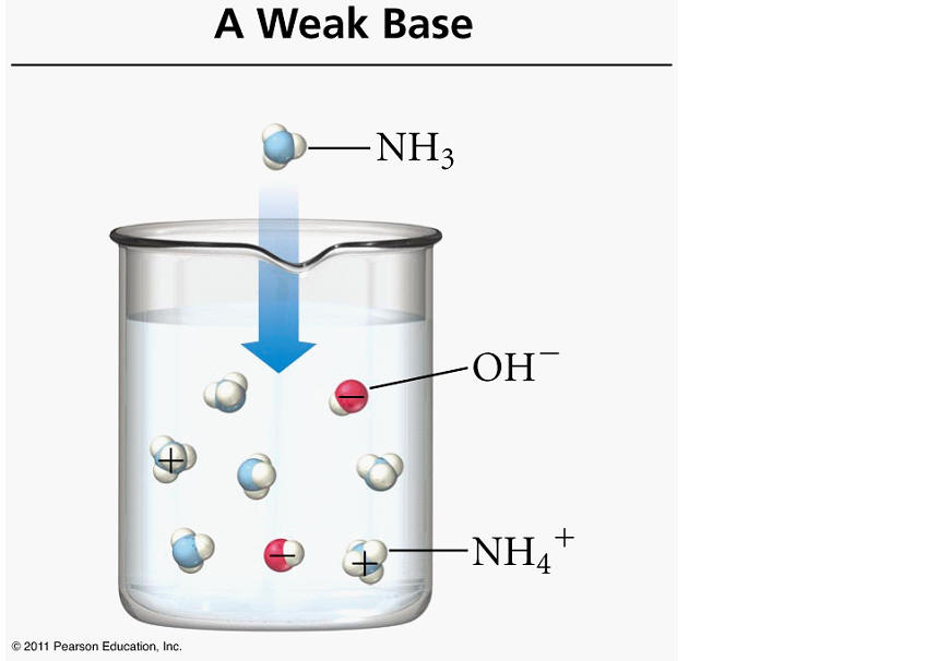 http://academic.cuesta.edu/gbaxley/chem1a/notes/all_you_need_to_know_about_acids.htm