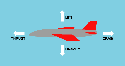 http://www.funpaperairplanes.com/learn_about_flight.html