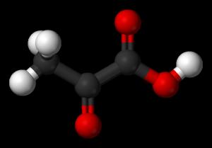 http://www.daviddarling.info/encyclopedia/P/pyruvic_acid.html