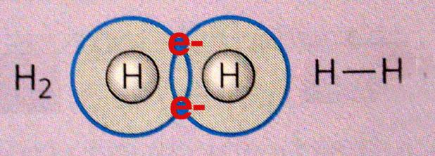 http://academic.brooklyn.cuny.edu/biology/bio4fv/page/covalent_bonds.html